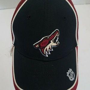 New Era Accessories - Phoenix Coyotes New Era Fitted Mesh Back Hat Cap N